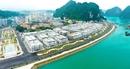 Tận hưởng cuộc sống lý tưởng và cơ hội kinh doanh vàng tại Vinhomes Dragon Bay Hạ Long