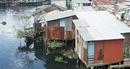 Phát triển khu đô thị sáng tạo tại TP Hồ Chí Minh