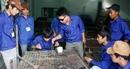 Nhiều doanh nghiệp ở Hải Phòng thiếu lao động trầm trọng