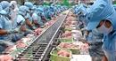 Xuất khẩu tăng trưởng ấn tượng trong 6 tháng đầu năm 6 tháng xuất siêu 3,36 tỷ USD