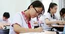 Học sinh được tự chọn ngoại ngữ bất kỳ trong kỳ thi tuyển sinh vào lớp 10
