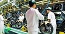 Honda Việt Nam bán hơn 2,38 triệu xe máy trong năm tài chính 2018