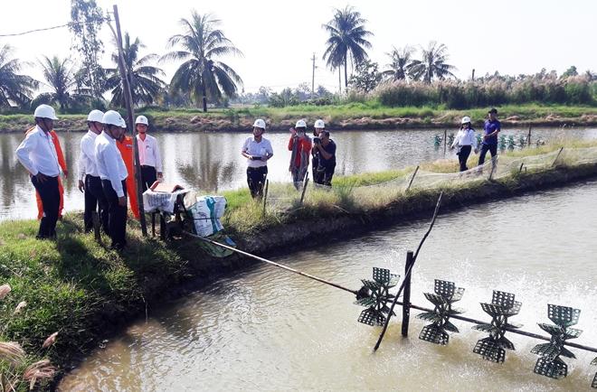 Nhân viên Điện lực Sóc Trăng tuyên truyền cho người dân Vĩnh Châu về cách sử dụng điện tiết kiệm và an toàn trong nuôi tôm.