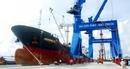 Cảng container lớn nhất nước lên kế hoạch làm hàng dịp nghỉ Tết