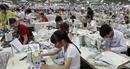 Doanh nghiệp cần thực hiện quy định về lao động trong các FTA