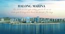 Halong Marina: Khu đô thị du lịch chuẩn quốc tế tại Hạ Long