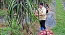 Vĩnh Phúc - Nông thôn mới gắn với sản phẩm đặc trưng