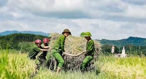 """Công an giúp dân gặt lúa """"chạy"""" siêu bão Mangkhut1"""