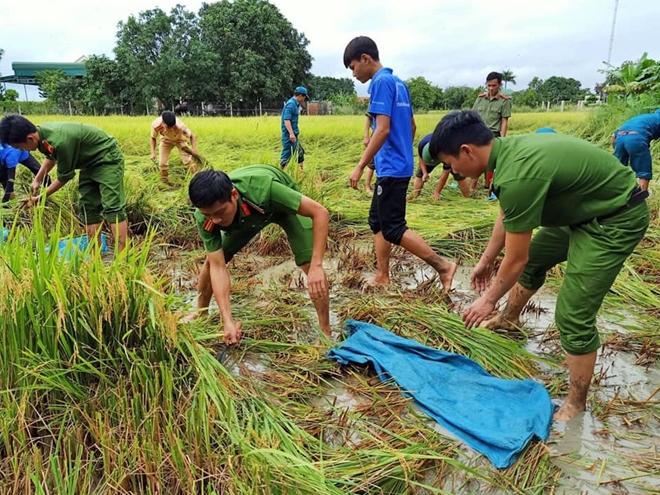 Lực lượng CAND luôn gắn bó mật thiết, sẵn sàng giúp đỡ nhân dân. Trong ảnh là CBCS Công an huyện Ea Súp (Đắk Lắk) giúp dân thu hoạch lúa sau cơn lũ tháng 8-2019.
