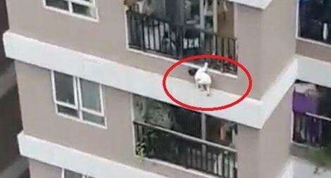 Thót tim hình ảnh bé gái 3 tuổi rơi từ tầng 12 chung cư xuống đất
