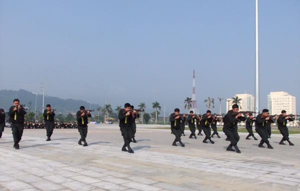 Các đơn vị tổ chức hội thao điều lệnh, võ thuật, thể dục thể thao - Ảnh minh hoạ 4