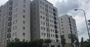 Số lượng lớn căn hộ có giá dưới 1 tỷ đồng đã ra mắt