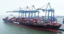Giải quyết thủ tục nhanh cho tàu hơn 100.000 tấn cập cảng HICT