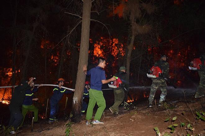 Những người ngày đêm căng mình trong biển lửa để giữ rừng ở Hà Tĩnh - Ảnh minh hoạ 8