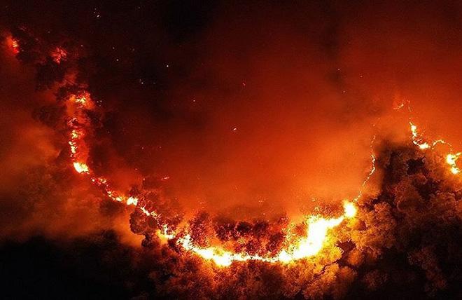 Những người ngày đêm căng mình trong biển lửa để giữ rừng ở Hà Tĩnh - Ảnh minh hoạ 2