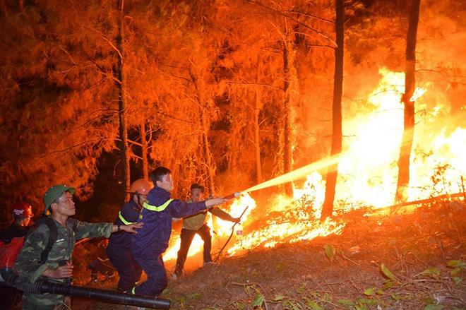 Những người ngày đêm căng mình trong biển lửa để giữ rừng ở Hà Tĩnh - Ảnh minh hoạ 7