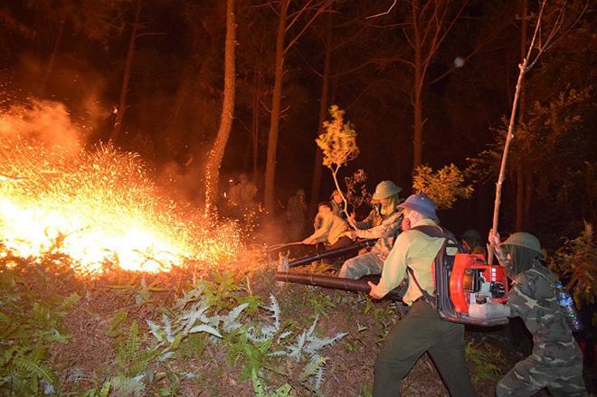 Những người ngày đêm căng mình trong biển lửa để giữ rừng ở Hà Tĩnh - Ảnh minh hoạ 11