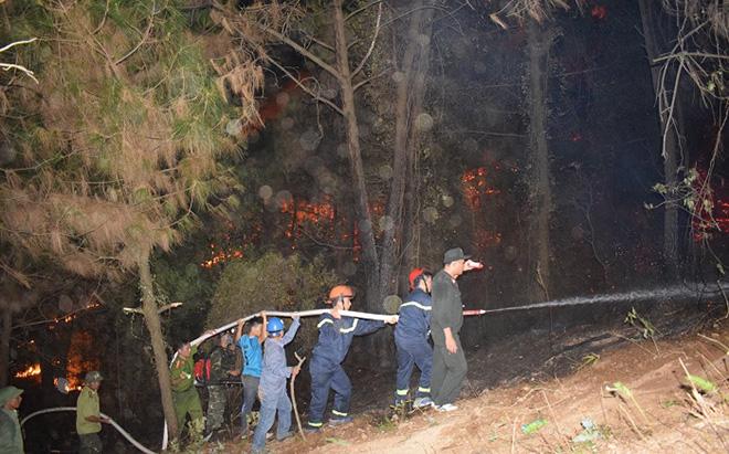 Những người ngày đêm căng mình trong biển lửa để giữ rừng ở Hà Tĩnh - Ảnh minh hoạ 10