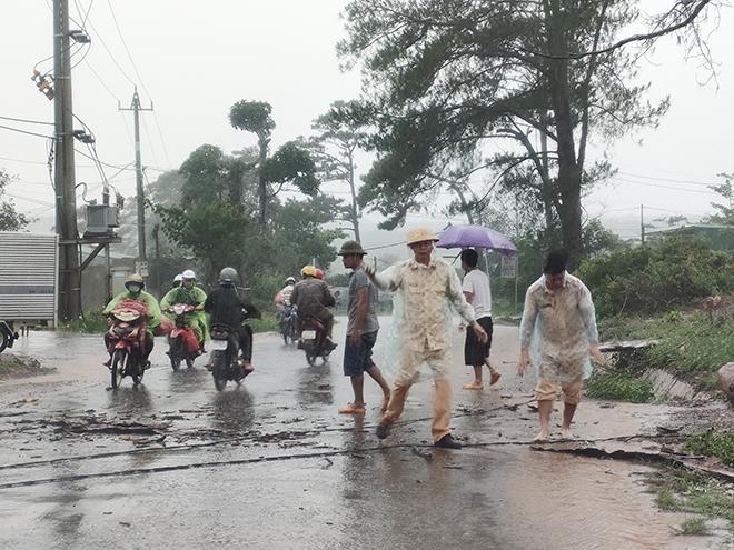 CSGT dầm mưa cùng người dân dọn cây gỗ lớn đổ ngang đường - Ảnh minh hoạ 4