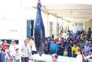 """Ngư dân Phú Yên câu được cá ngừ đại dương """"khổng lồ"""" chưa từng có"""