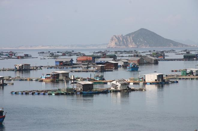Công an các tỉnh khu Nam Trung bộ ứng phó cơn bão số 6 - Ảnh minh hoạ 5