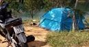 Dựng lều sống trong rừng để đi cướp