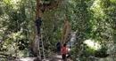 Chính thức chấm dứt hoạt động phim trường chui trong KDL Quốc gia hồ Tuyền Lâm