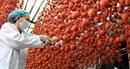 Đà Lạt: Cung cấp mã vạch cho đặc sản để phân biệt với hàng Trung Quốc