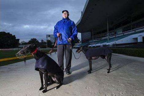Kết quả hình ảnh cho Thủ hiến NSW Mike Baird đảo ngược quyết định cấm đua chó