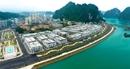 Xu hướng đầu tư bất động sản đang nóng nhất ở Hạ Long?