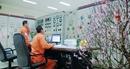 EVN cấp điện an toàn, ổn định trong dịp Tết