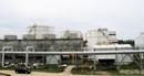 Nhà máy Nhiên liệu sinh học Dung Quất: Sẵn sàng hoạt động trở lại