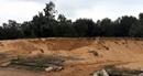 Quảng Nam quyết liệt xử lý nạn trộm cát ven tuyến đường 129