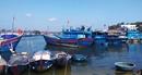 Đầu năm khan hiếm lao động biển