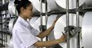 PVN, PVTEX và người lao động Dầu khí nỗ lực vận hành trở lại NMXS Đình Vũ