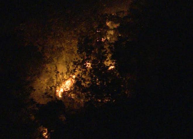 Dập tắt kịp thời đám cháy tại khu vực Quần thể danh thắng Tràng An