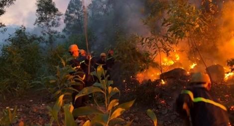 Liên tục xảy ra cháy rừng ở Nghệ An, lực lượng Công an căng sức cứu chữa