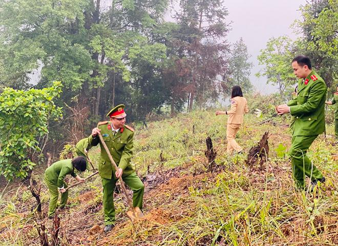 Trồng 1.000 cây hồi tặng người dân - Ảnh minh hoạ 2