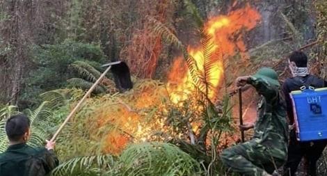 150 chiến sĩ Công an xông vào lửa chữa cháy trên đỉnh núi Phú Sơn