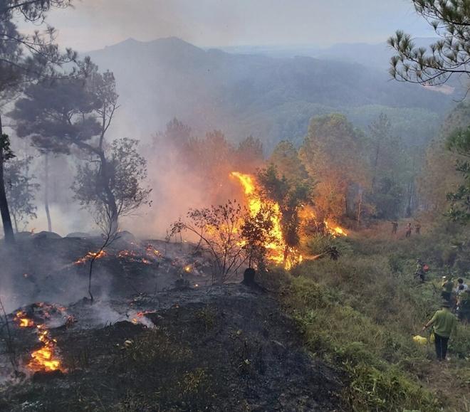 150 chiến sĩ Công an xông vào lửa chữa cháy trên đỉnh núi Phú Sơn - Ảnh minh hoạ 2