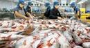 Hoa Kỳ áp thuế chống bán phá giá cá tra Việt thiếu khách quan