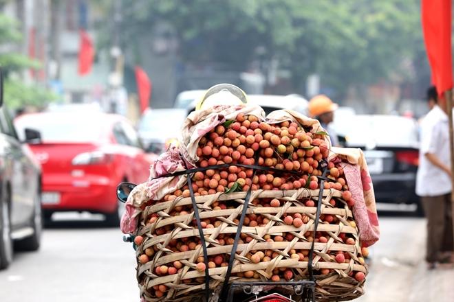Vải Thanh Hà được xuất đi rất nhiều thị trường không chỉ trong nước mà còn ra một số thị trường nước ngoài.