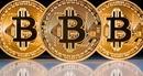 """Hơn 800 loại tiền điện tử chết ngả rạ, Bitcoin thì """"thoi thóp"""""""