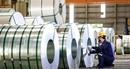 Mùng 1 Tết, Tập đoàn Hoa Sen đã ký hợp đồng xuất khẩu 4.300 tấn tôn, trị giá 3,7 triệu USD đi châu Mỹ