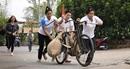"""Sôi nổi phần thi """"Đua xe đạp thồ"""" tái hiện lịch sử hào hùng của dân tộc"""