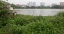 Dự án chung cư và dịch vụ công cộng TDC: Sau 8 năm vẫn là… hồ nuôi cá