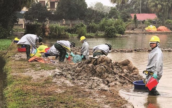 Những người chuyên giải cứu môi trường