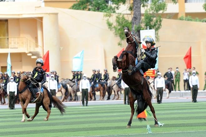 Mãn nhãn với màn phô diễn kỹ thuật điêu luyện của Cảnh sát cơ động Kỵ binh - Ảnh minh hoạ 9