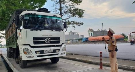 CSGT Thanh Hoá kiên quyết xử lý xe quá khổ