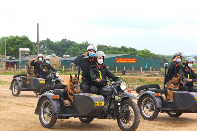 Lực lượng kỵ binh, chó nghiệp vụ sẵn sàng các phương án bảo vệ bầu cử - Ảnh minh hoạ 7